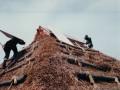 茅葺の家ー3